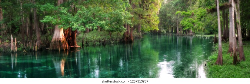 Panorama of Ichetucknee Springs at sunrise, a beautiful spring-fed river in Florida