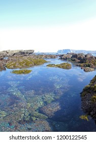 Panorama image of a reef on the shore of the atlantic ocean on a sunny day in summer