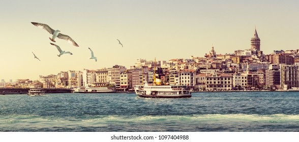 Panorama of Istanbul with Galata Tower at skyline and seagulls over the sea. Wide landscape of Golden Horn at sunset - travel background for your billboard.