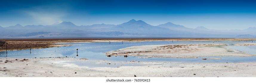 Panorama of Lake Chaxa near San Pedro de Atacama, Chile