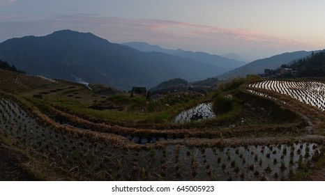 Panorama of the Longsheng Rice Terrace, also called the Longji Rice Terrace in China on sunset.