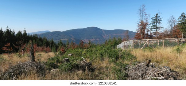 panorama with Lysa hora from hillside of Travny in Beskydy mountains in east part of Czech Republic