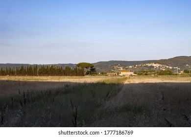 Panorama of the Maremma hills