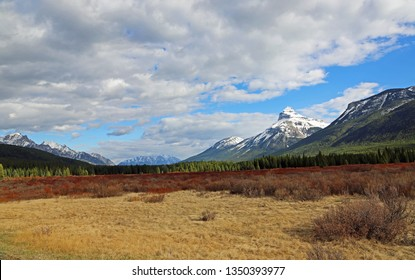 Panorama with Moose Meadows - Bow Valley, Banff National Park, Alberta, Canada
