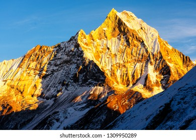 Panorama of Mount Machapuchare (Fishtail) at sunset, view from Annapurna base camp in the Nepal Himalaya. Machhapuchchare is a mountain in the Annapurna Himal of north Central Nepal