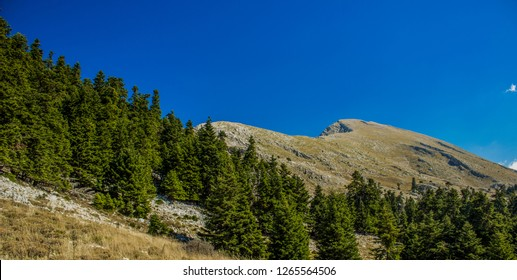 panorama of mountain forest ridge horizon beautiful picturesque background scenic landscape wallpaper pattern concept