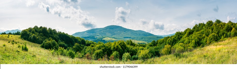 panorama of mountainous countryside. forest on a grassy meadow. high mountain in the distance. wonderful early autumn landscape