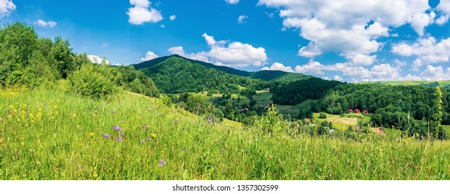 panorama of mountainous countryside in summer.  rural fields on grassy hills. wild herbs on the meadow. wonderful sunny weathe with a blue sky with fluffy clouds. village in the distant valley