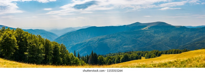 panorama of a mountainous landscape. grassy meadow down the hill in to the forest. lovely summer landscape
