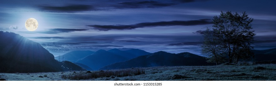 panorama of a mountainous landscape. trees on the grassy meadow. power line tower in the distance. beautiful autumn night in full moon light
