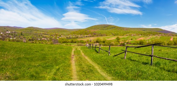panorama of mountainous rural area in springtime. lovely countryside scenery with wooden fence along the country road in the village outskirts