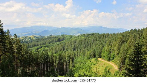 Panorama of mountains and forests