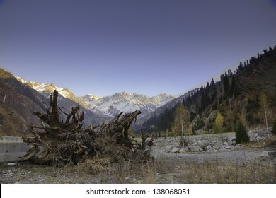 Panorama of nature  fir and green mountains, snow and blue sky in Medeo Almaty,  Kazakhstan