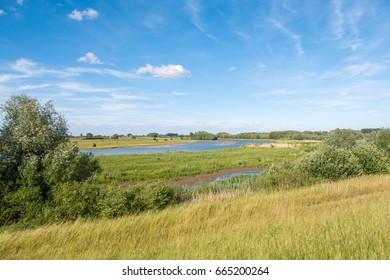 Panorama of nature reserve Breemwaard in flood plains of river Waal from dike on south bank near Nieuwaal, Bommelerwaard, Gelderland, Netherlands
