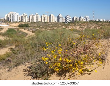 Panorama of the new district of the city of Holon in Israel. View from the sand dunes