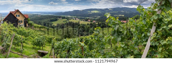 panorama old wine growing area named Schilcherstrasse in Steinreib near Stainz in Styria, Austria
