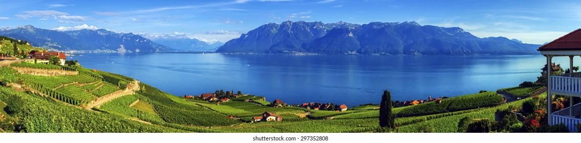 Panorama on Lavaux region by day, Vaud, Switzerland