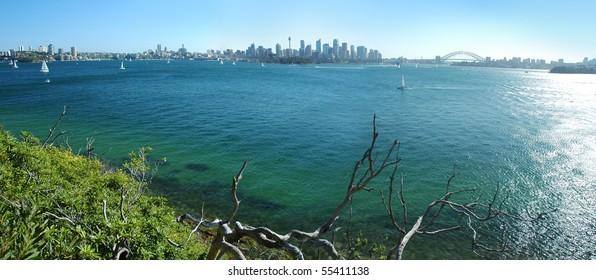 panorama photo of Sydney scenery, CBD, Sydney Tower and Harbor bridge visible