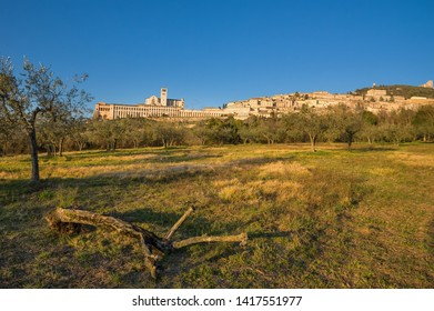 Panorama of picturesque historic city Assisi in Perugia region in Italy, famous as birthplace of saint Francis with view on Basilica of Saint Francis of Assisi from valley below