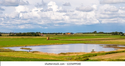 Panorama of polder landscape with farmland and wetlands on West Frisian island Texel, Noord-Holland, Netherlands