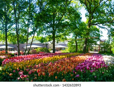 Gardens Of The World Stock Photos Images Photography Shutterstock