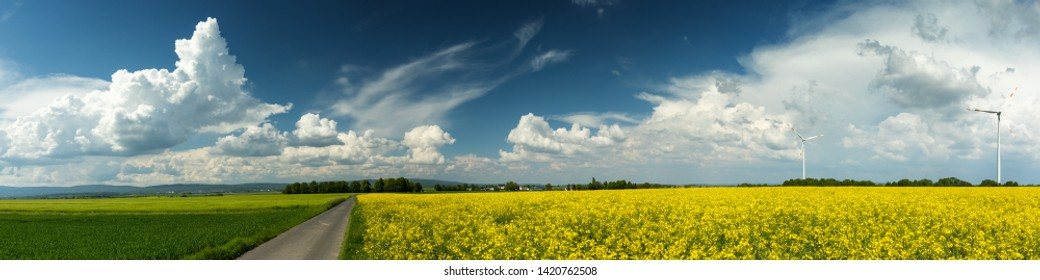 PAnorama of a rural landscape in spring with yellow canola fields and wind turbines, Wetterau, Hesse, Germany