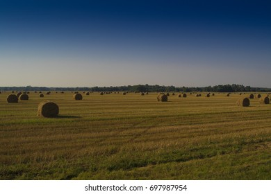 Panorama of a rural landscape, a yellow field with sheaves of hay and a blue sky