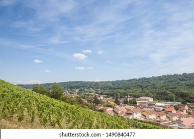 Panorama of Saint Savin, small French village of Isere, in the Dauphine province, with medieval catholic church & other historic building seen from vineyards of the village used for wine production