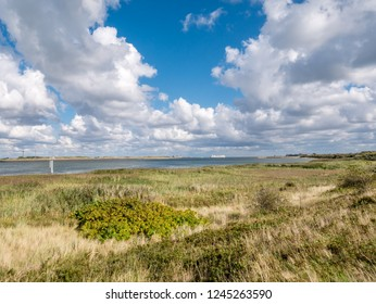 Panorama of salt marshes of Mokbaai, inlet of Wadden Sea on West Frisian island Texel, Netherlands