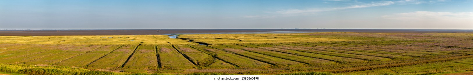 Panorama of the salt marshes on the East Frisian Island Juist in the North Sea, Germany.