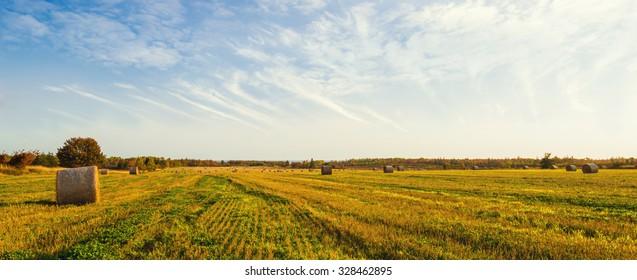 Panorama of scenic view of hay stacks at fall (North Cape Coastal Drive, Prince Edward Island, Canada)