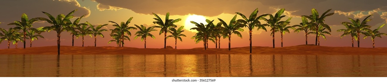 panorama of sea sunset, sunrise, Banner, Island. seascape. palms