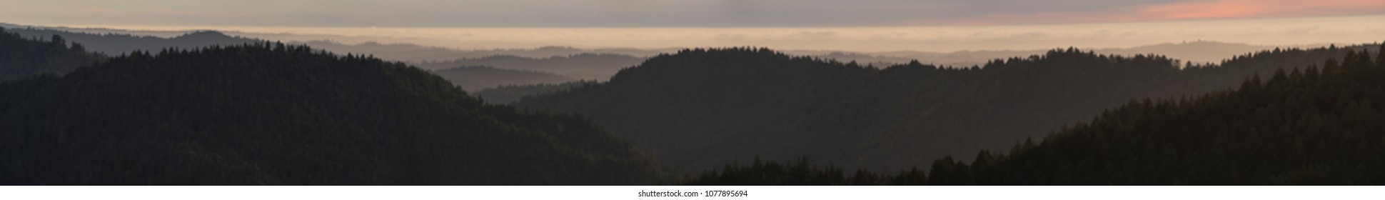 Panorama of serene forested landscape of California Coastal Range, Mendocino County, USA.