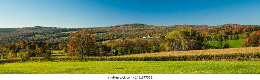 A panorama shot of a corn field and farm with barn in the rolling hills covered with autumn colors near Stowe, VT