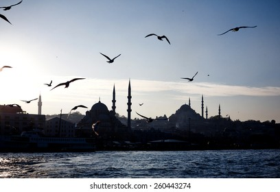 Panorama silhouette of Istanbul city with flying seagulls in blue sunny sky