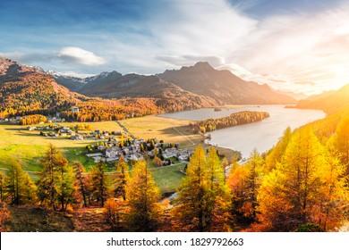Panorama von Sils Dorf und See Sils (Silsersee) in den Schweizer Alpen Bergen. Farbiger Wald mit orangefarbenem Lärchen. Schweiz, Region Maloja, Oberengadin. Landschaftsfotografie