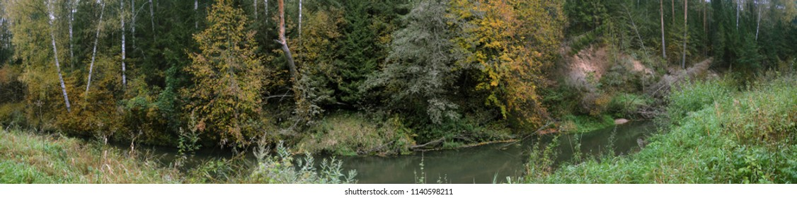 Panorama of a small river in the autumn day with green trees and yellow leaves.