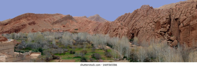 Panorama of Spring willows and deformed rocky hills near the Todra Gorge,  Morocco, Africa