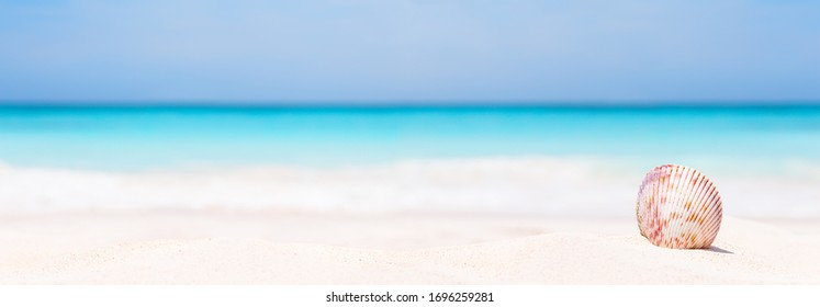 Panorama of summer beach with starfish and blue sea background. Landscape of tropical summer. Summer vacation concept.