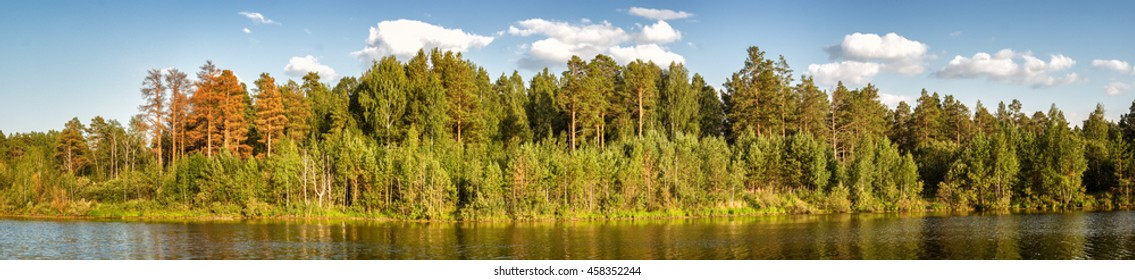 panorama of the summer landscape of pine forest on the shore of a lake, Russia, Ural