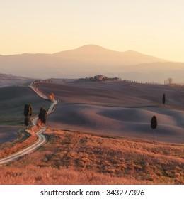 Panorama of sunny Tuscany valley. Tuscany, Italy, Europe.