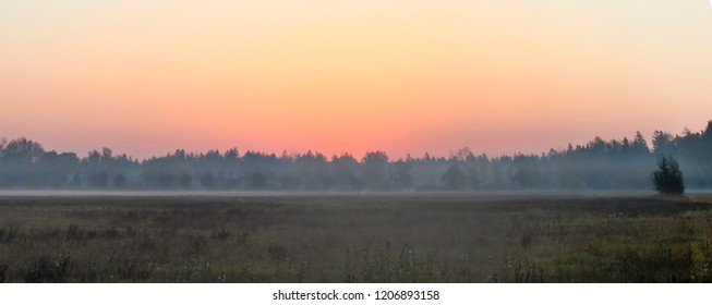 Panorama of a sunrise at the forest edge over a foggy field