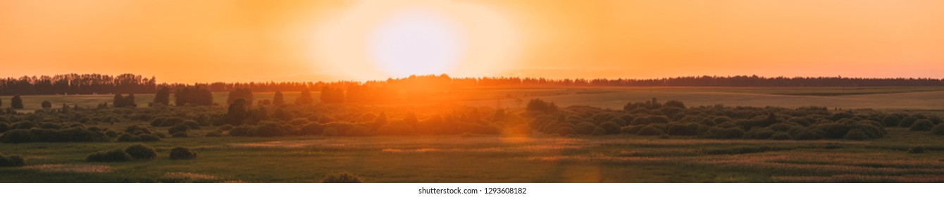 Panorama Of Sunset Sunrise Over Meadow. Yellow Sky Over Green Ground. Countryside Landscape At Sunset Dawn Sunrise. Skyline, Horizon.