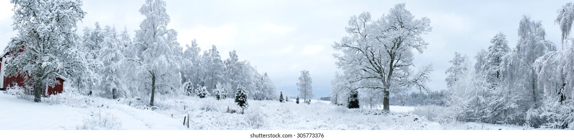 Panorama of Swedish winter landscape
