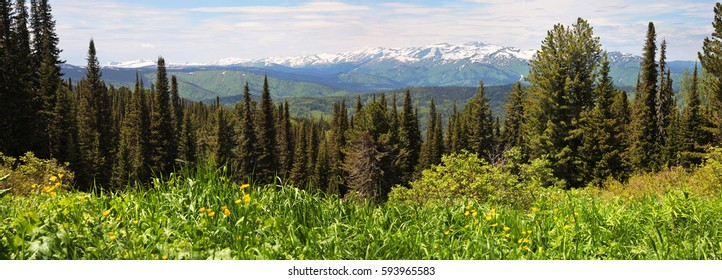 Panorama Taiga, Siberia