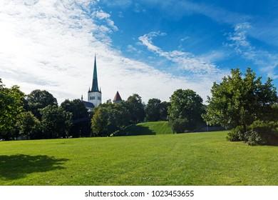 Panorama of Toompea green hills, Kiek in de Kok tower and Olaf Baptist Church. Summer Old city, Tallinn, Estonia.