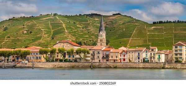 Panorama of Tournon sur Rhone river town and Vineyards on the Hills of the Cote du Rhone Area in France