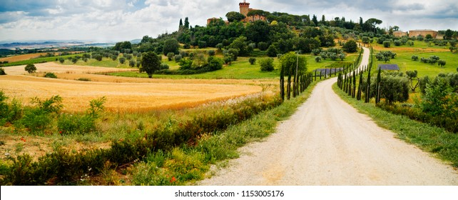 Panorama of traditional farm with path and cypresses in Tuscany, Italy