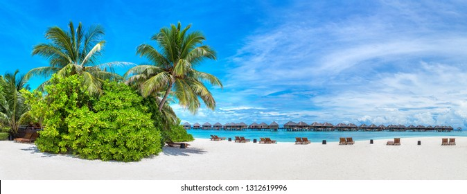Panorama of Tropical beach in the Maldives at summer day
