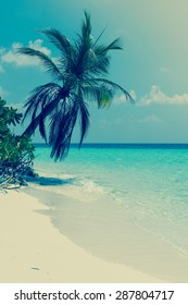 Panorama of tropical island Beach with palm trees. Vintage filter soft light.